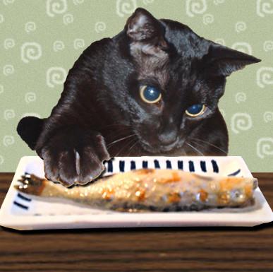 黒猫麦さん