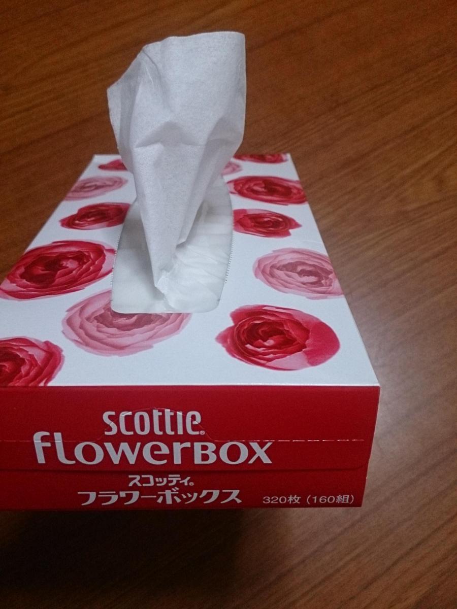 スコッティ フラワー ボックス